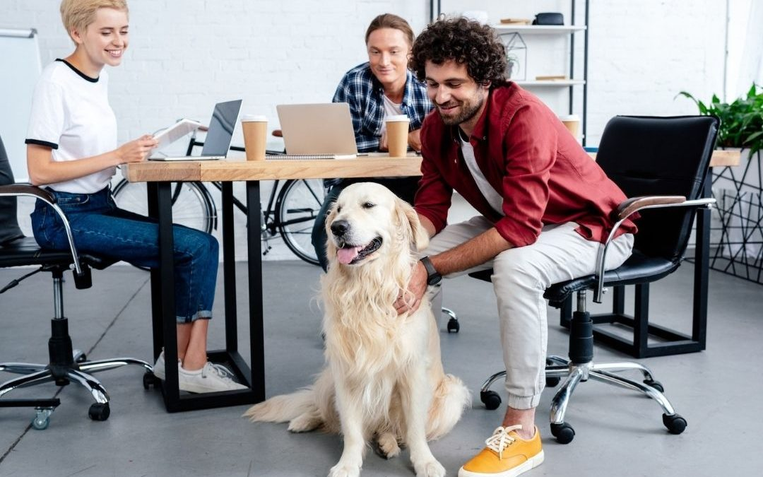 5 ways to bring more fun to the office now that it's open
